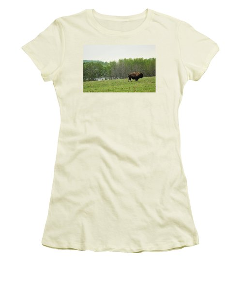 Saskatchewan Buffalo Women's T-Shirt (Junior Cut) by Ryan Crouse