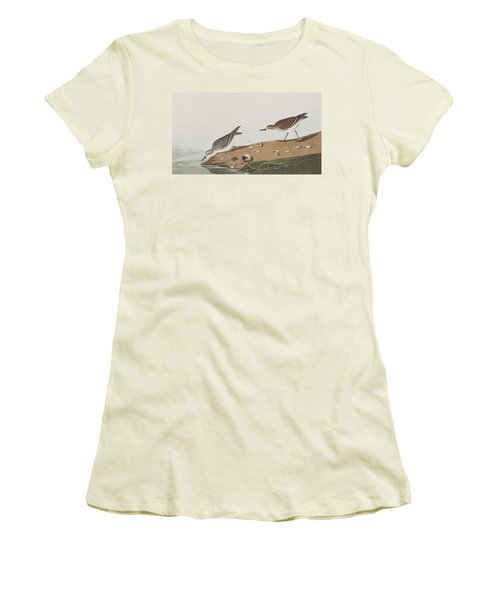 Semipalmated Sandpiper Women's T-Shirt (Junior Cut) by John James Audubon