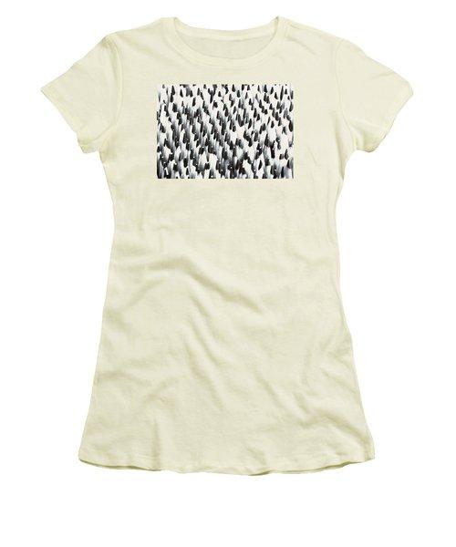 Sharp Wooden Pencils Women's T-Shirt (Junior Cut) by Evgeniy Lankin