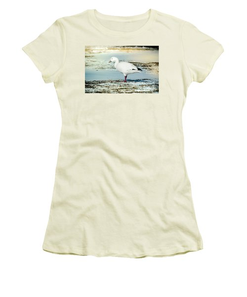 Women's T-Shirt (Junior Cut) featuring the photograph Snow Goose - Frozen Field by Robert Frederick