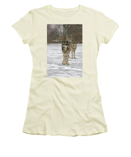 Women's T-Shirt (Junior Cut) featuring the photograph Snow Mates by Shari Jardina
