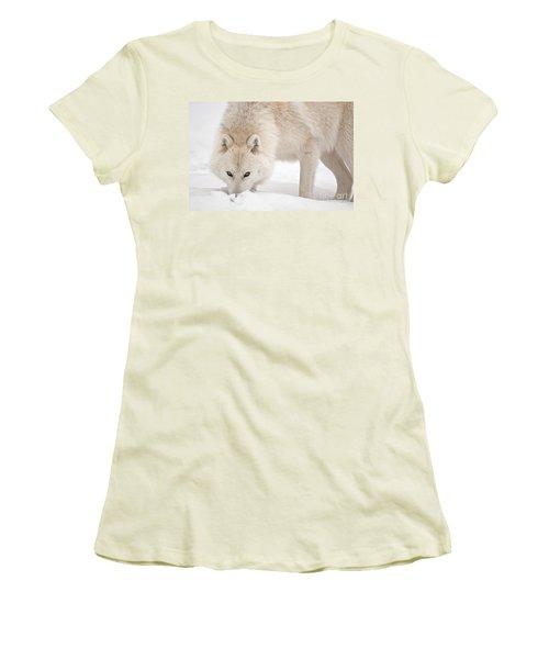 Snow Nose Women's T-Shirt (Junior Cut) by Michael Cummings