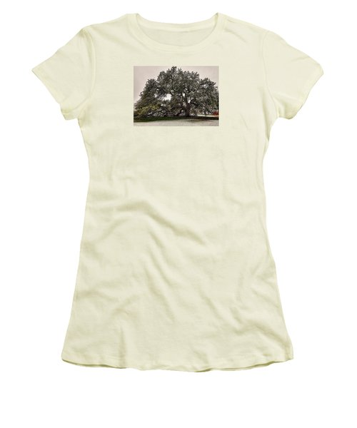 Snowfall On Emancipation Oak Tree Women's T-Shirt (Athletic Fit)