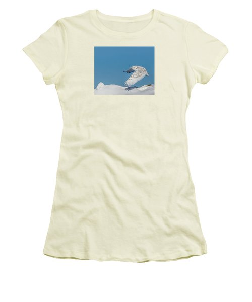 Snowy Owl - Taking Flighty Women's T-Shirt (Junior Cut) by Dan Traun