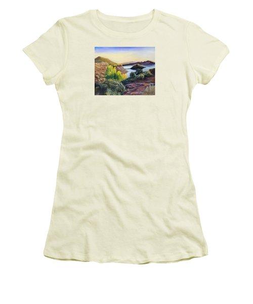 Steinaker Women's T-Shirt (Junior Cut) by Sherril Porter