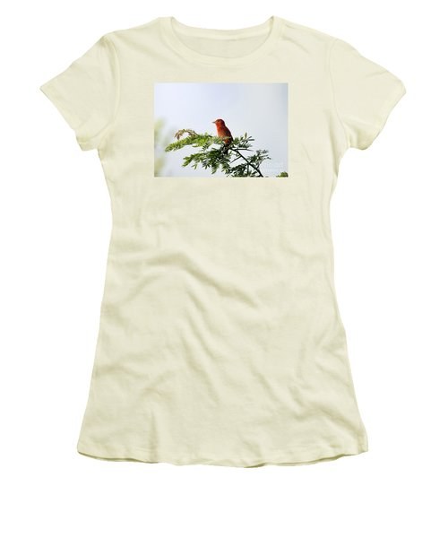 Women's T-Shirt (Junior Cut) featuring the photograph Summer Tanager In Mesquite Scrub by Robert Frederick