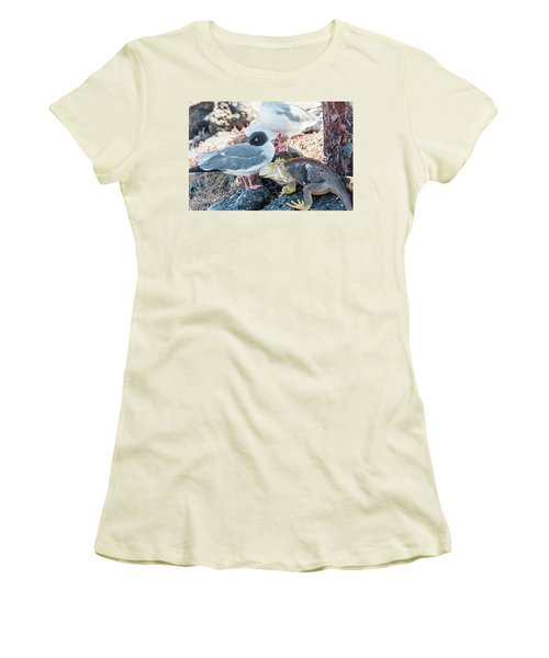 Swallow Tailed Gull And Iguana On  Galapagos Islands Women's T-Shirt (Athletic Fit)