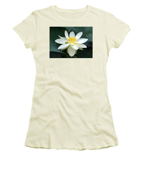 The Lotus Flower The Frog And The Bee Women's T-Shirt (Junior Cut)