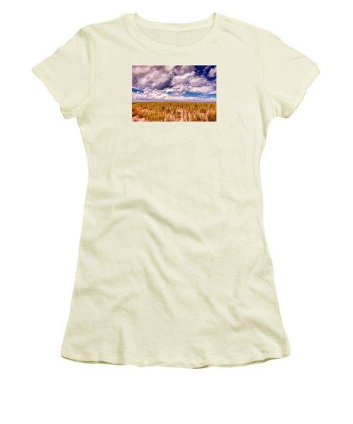 Women's T-Shirt (Junior Cut) featuring the photograph Where Land Meets Sky by Gary Slawsky