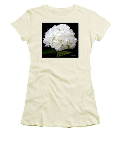 White Hydrangea Women's T-Shirt (Junior Cut) by Kume Bryant