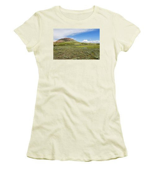 Women's T-Shirt (Athletic Fit) featuring the photograph Wild Flowers And Grasses At Yellowstone by John M Bailey