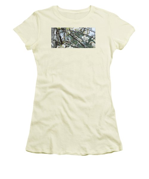 Yellow-rumped Warbler In Pear Tree Women's T-Shirt (Athletic Fit)