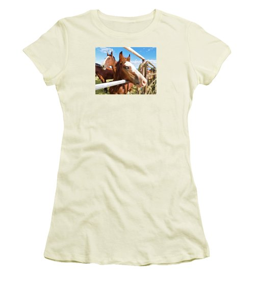Young Blue Eyed Horse Women's T-Shirt (Junior Cut) by Deborah Moen