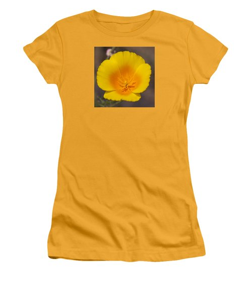 California Sunshine Women's T-Shirt (Junior Cut) by Caitlyn  Grasso
