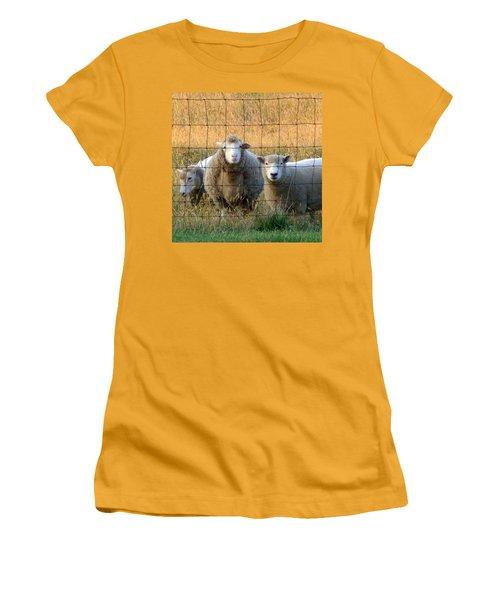 Women's T-Shirt (Junior Cut) featuring the photograph Baaaaa by Joseph Skompski