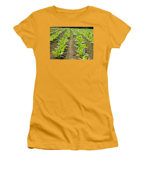 Burley Tobacco Women's T-Shirt (Athletic Fit)