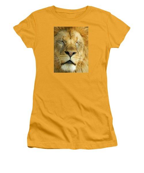 Cat Nap Women's T-Shirt (Junior Cut) by Emmy Marie Vickers