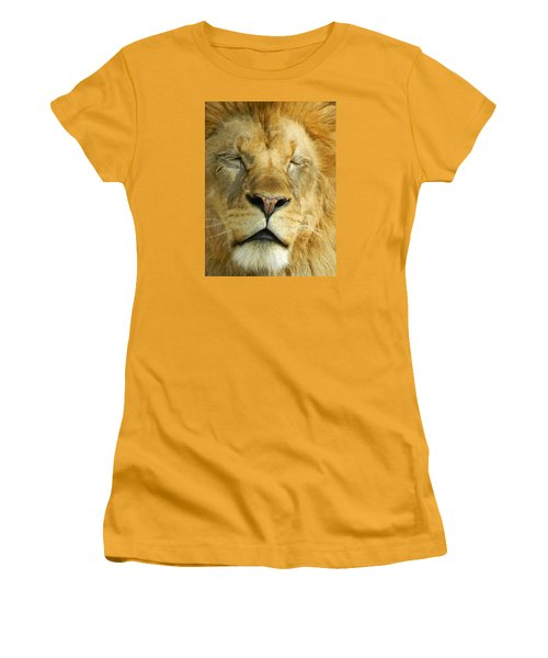 Cat Nap Women's T-Shirt (Athletic Fit)