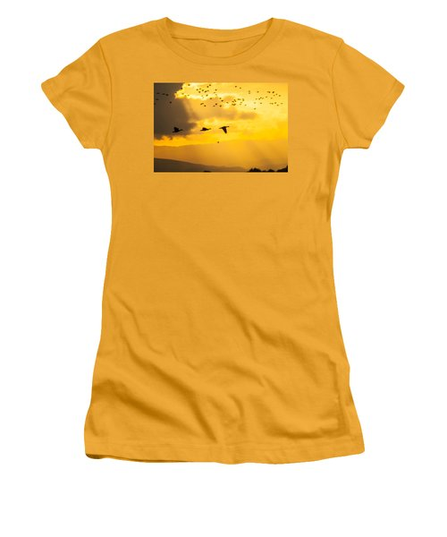 Geese At Sunset-2 Women's T-Shirt (Athletic Fit)