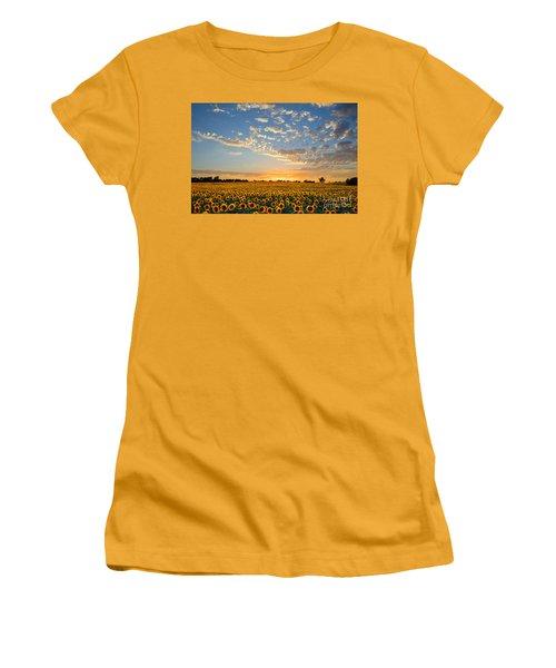 Kansas Sunflowers At Sunset Women's T-Shirt (Junior Cut) by Catherine Sherman