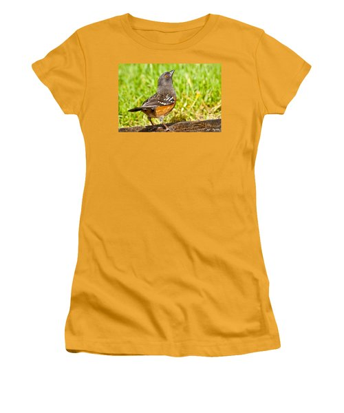 Spotted Towhee Looking Up Women's T-Shirt (Athletic Fit)
