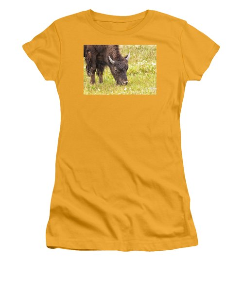 Young Bison Women's T-Shirt (Junior Cut) by Belinda Greb