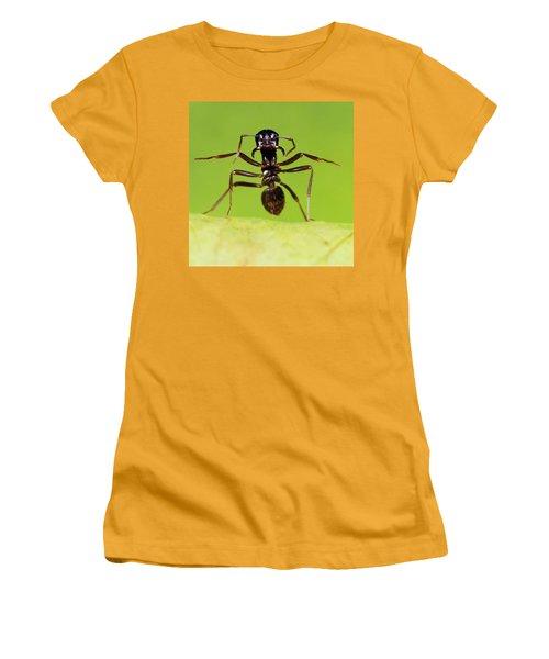 Japanese Slave-making Ant Polyergus Women's T-Shirt (Junior Cut) by Satoshi Kuribayashi