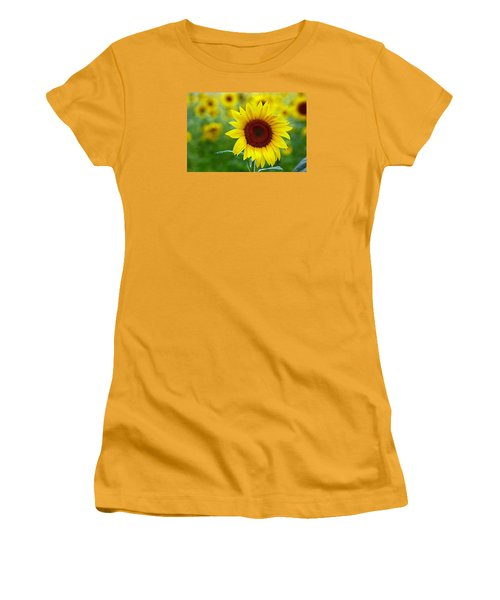 Sunflower Time Women's T-Shirt (Athletic Fit)