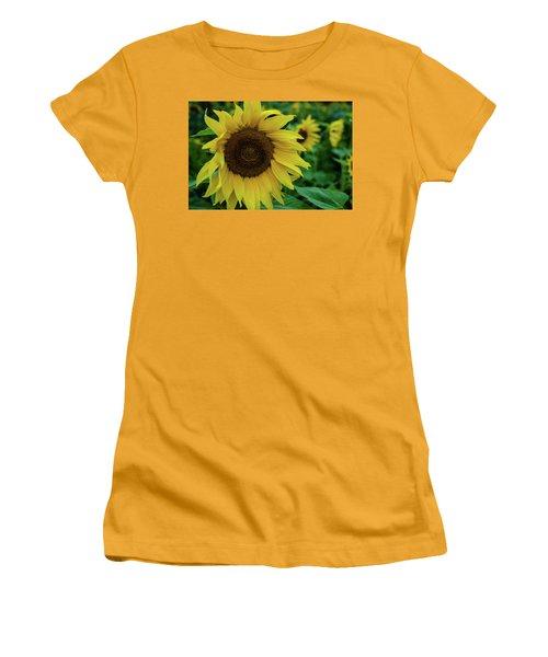 Sunflower Fields Women's T-Shirt (Junior Cut) by Miguel Winterpacht
