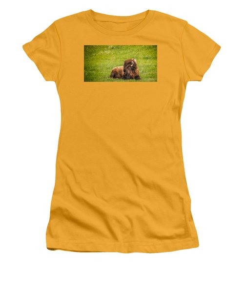 Women's T-Shirt (Athletic Fit) featuring the photograph Ancient Bison by Rikk Flohr