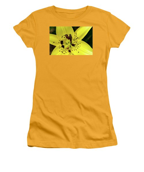 Asiatic Lily Women's T-Shirt (Junior Cut) by Jay Stockhaus