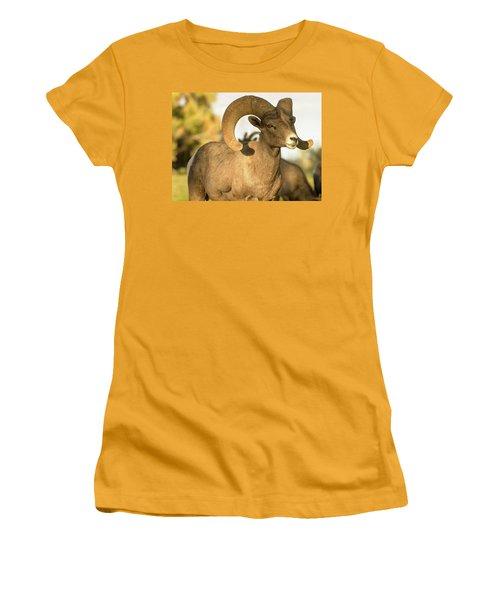 Bighorn Ram Women's T-Shirt (Junior Cut) by Scott Warner