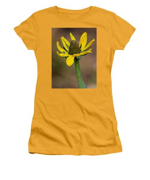 Bright And Shining Women's T-Shirt (Junior Cut) by Deborah  Crew-Johnson