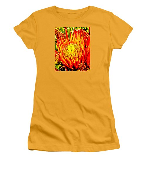 Cactus Flower Women's T-Shirt (Junior Cut) by Judi Saunders