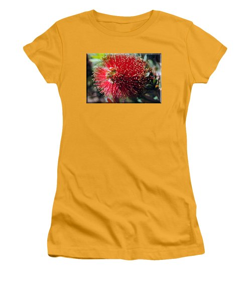 Callistemon - Bottle Brush T-shirt 5 Women's T-Shirt (Junior Cut) by Isam Awad