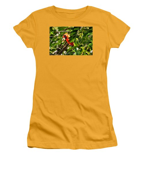 Cardinal In Tree Women's T-Shirt (Athletic Fit)