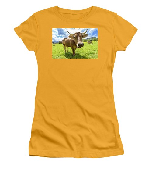 Women's T-Shirt (Junior Cut) featuring the photograph Cow In Meadow by MGL Meiklejohn Graphics Licensing