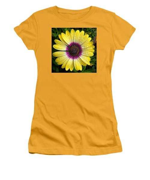 Dew Dropped Daisy Women's T-Shirt (Athletic Fit)
