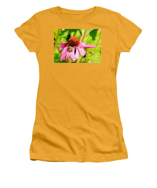 Echinacea Bee Women's T-Shirt (Athletic Fit)