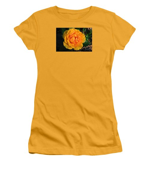 Golden Memories Women's T-Shirt (Junior Cut) by Sandy Molinaro