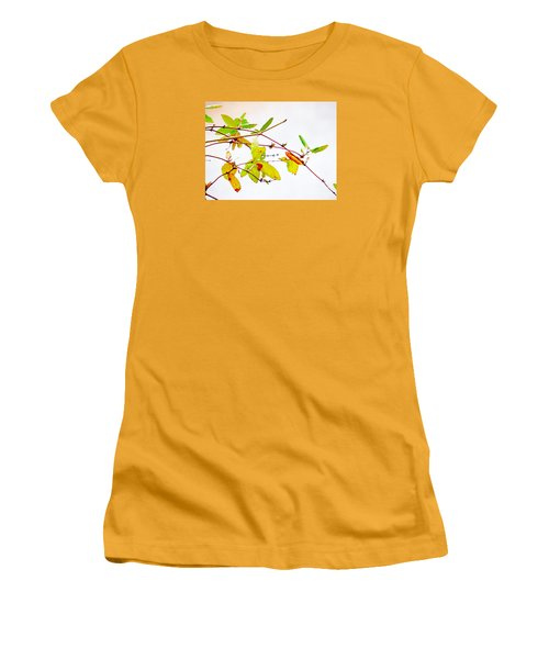 Green Twigs And Leaves Women's T-Shirt (Junior Cut) by Craig Walters