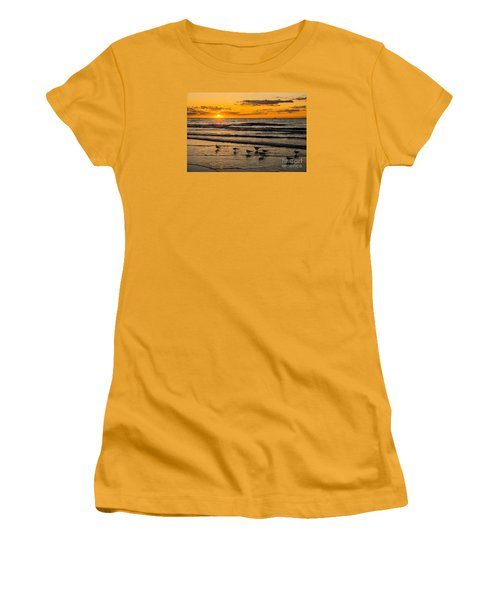 Hilton Head Seagulls Women's T-Shirt (Junior Cut) by Paul Mashburn