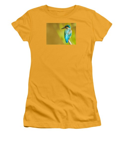 Kingfisher Women's T-Shirt (Athletic Fit)