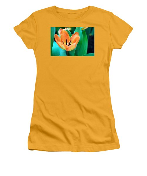 Lily #4 Women's T-Shirt (Athletic Fit)