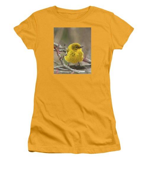 Little Yellow Women's T-Shirt (Junior Cut)