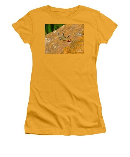 Women's T-Shirt (Junior Cut) featuring the photograph Lounging Lizard by Rand Herron