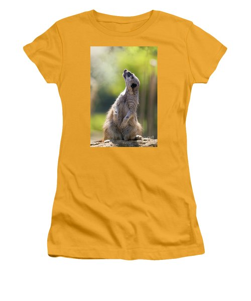 Magical Meerkat Women's T-Shirt (Athletic Fit)