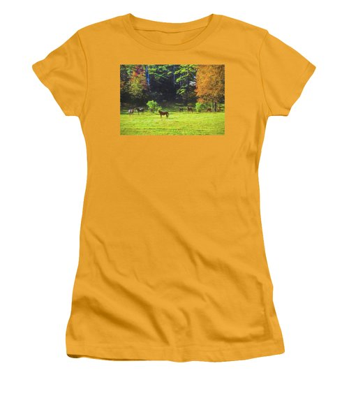 Morgan Horses In Autumn Pasture Women's T-Shirt (Athletic Fit)