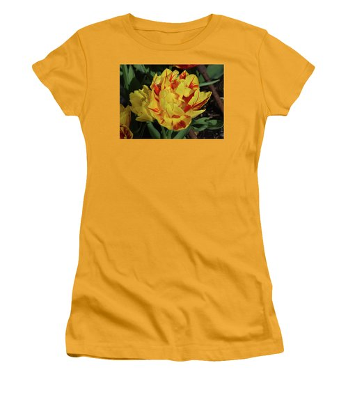 Morning Dew Drops Women's T-Shirt (Athletic Fit)