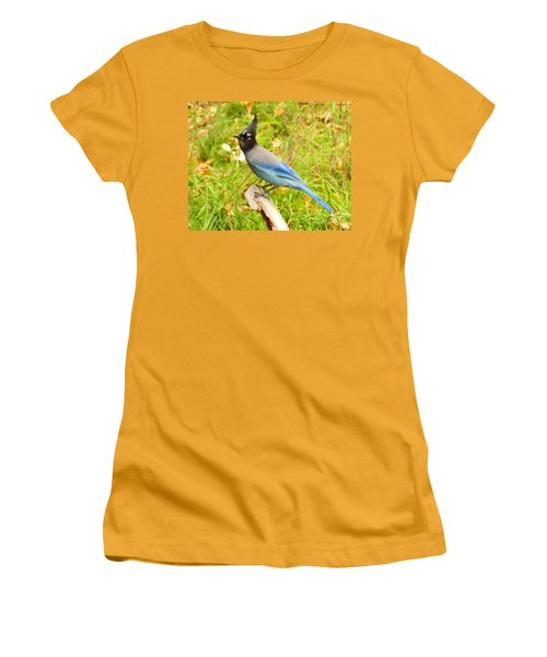 Mountain Blue Jay Women's T-Shirt (Athletic Fit)